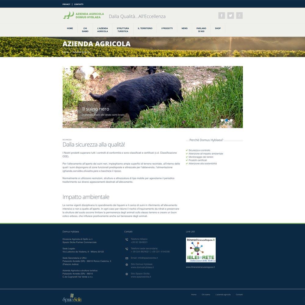 Progettazione Sviluppo Sito Domus Hyblaea | D2C srl | Digital Agency Milano | Al tuo cliente, direttamente