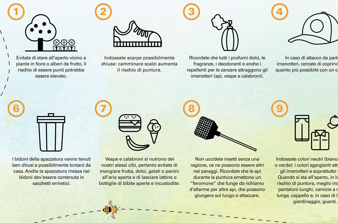 Campagna Imenotteri | D2C srl | Digital Agency Milano | Al tuo cliente, direttamente